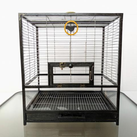Client Spotlight: Paul's Custom-Built Bird Cages